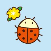 てんとう虫は何食べる?餌の代用になったものを紹介♪子供と楽しく育ててみた!